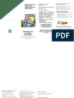 paciente encamado folleto fisiatria