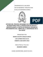 proceso bioquímico de biodigestión