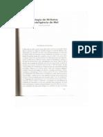 Teologia do Niilismo - A Inteligência do Mal - Luiz Felipe Pondé