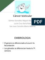 Cáncer testicular (1)