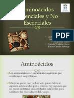 Expo Aminoácidos Escenciales y No Escenciales