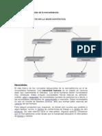 Conceptos Centrales de Mercadotecnia