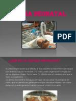 Diapositivas Asfixia Neonatal Trabajo