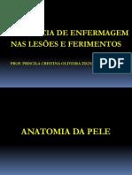 Aula Feridas PDF