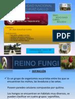 Bilogia Reino Fungi2