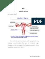 Anatomi Uterus 1