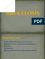 BRUCELOSIS[1]