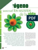 Nitrogeno_64.pdf