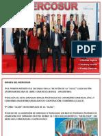 Mercosur Exposicion Laminas