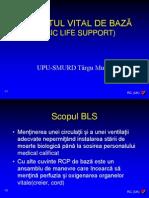 6- RCP-BLS