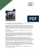 Limpieza_del_caballo.pdf