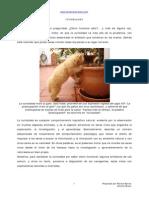 Cómo Funciona.pdf