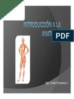 01- Generalidades Anatomia