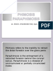Phymosis paraphymosis