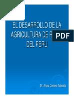 Desarrollo de La Agricultura Del Riego