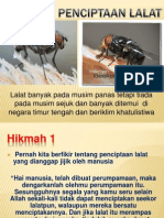 Hikmah Lalat