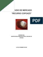 Estudio de Mercado Copoazu