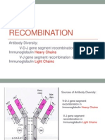 VDJ Recombination With Antibody Structure