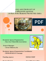 2 Abalone_san Jose MPA_biocon Progress Report_dec2013