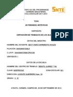 Proyecto de Cocurriculares 2013