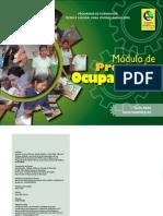 Manual de OIT Facilitador