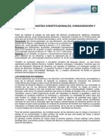 Lectura 3 - Derechos y Garantias