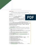 Modelo Acta Documentacion