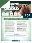 Bears PDF 53448e2eab435