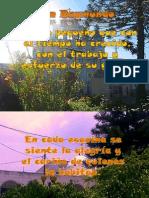 San Raymundo