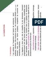Physiologie Digestive BIS