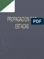 Pp. Estacas