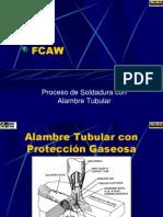 2.2. FCAW-09