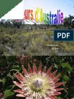 Ausztrália virágai