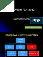 Sistem Saraf - Copy