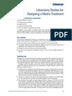 Lab tests for stimulation.pdf
