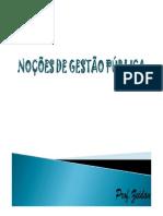 181715443 Gestao Publica