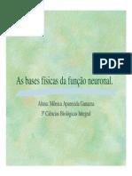 asbasesfisicasdafunoneuronal-130408171327-phpapp02