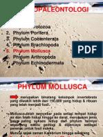 PPT Gastropoda