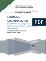 Elementos Liderazgo Organizacional