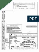 DM12-MN-GDK-RN3-0011 R1 Safety Valve&Back Pressure Valve