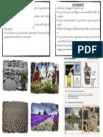 environment-weather.pdf