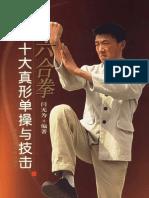xinyiliuhequan-shidazhenxing-dancao-yu-jiji-yan-wuwei OCR.pdf