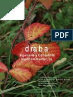 DRABa Memoria Octubre 2010