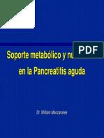 teorico pancreas2008