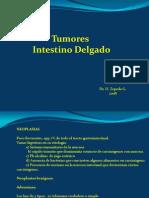 20) Tumores Intestino Delgado