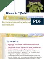 Plants in Motion