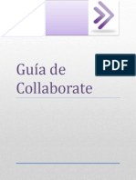Guía de Collaborate1