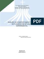 MODELO - Relatório Analise Marilia final 2013