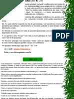 Instruções1.pps