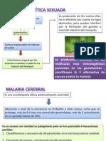 Malaria e Inmunizacion